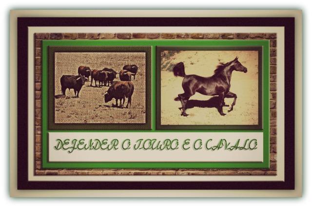 defender-o-touro-e-o-cavalo